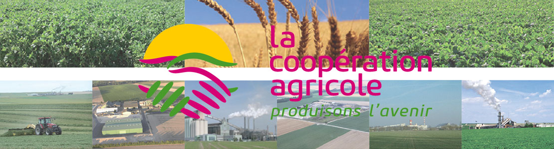 journée internationale coopératives